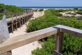 Playa del Carabassí de Elche